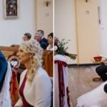 fotografia ślubna, ślub, wesele, slub, zabawa, wedding, party, bartekwoch_20200808_0056-150x150 Jola+Szymon